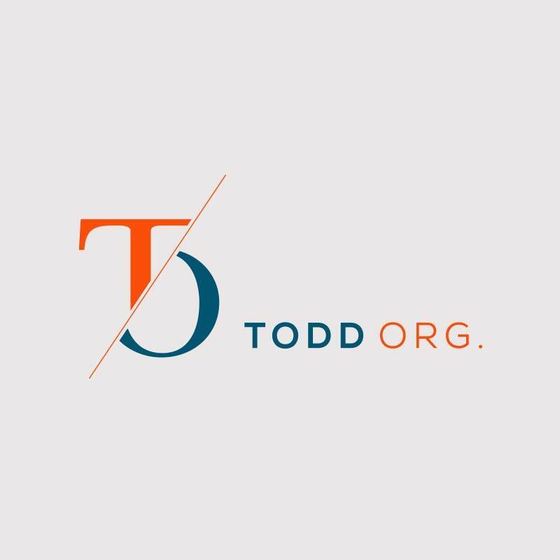 The Todd Organization Logo